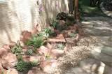 DIY Succulent Rock Garden.