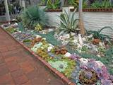 Garden, : Astounding Succulents Garden Design Ideas With Brown Brick ...