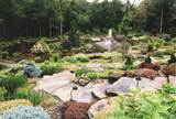 Rock Gardens Pictures