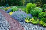 rock landscaping ideas backyard landscaping rock ideas