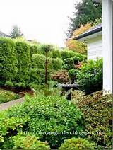 uncategorized flowergardengirl whimsical garden decor facts