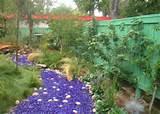 Whimsical Garden Decor Ideas