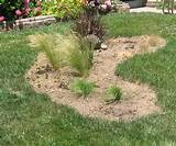 Landscape Design Gallery Lawn Reduction Projects