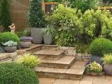 Description from Plant Ideas for Small Garden in Modern Design :