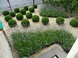 modern garden designs 2012 38 garden design ideas turning your home