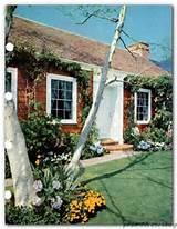 ... GARDEN BOOK MID CENTURY MODERN & VINTAGE DESIGN IDEAS 480 pgs