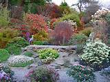 rock garden landscaping tips and flower choices
