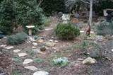 rock gardener i began to plan what i hoped the garden would be