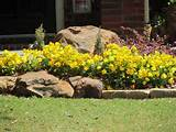 flower color scheme ideas that so fresh for exterior garden landscape