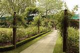 Modern Garden Path Design Ideas Res