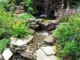 photos of the small rock gardens for the attractive garden style