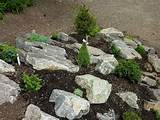 18 photos of the rock garden designs ideas