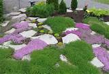 garden ideas beautiful easy rock garden ideas with green also purple