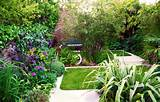 Modern town garden with limestone paving and evergreen planting