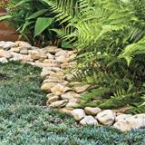 arrange stones around your plants to give them a proper border
