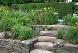 raised bed garden near woodstock ny