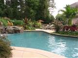 swimming pool landscaping