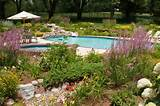 Truly, there are several pool landscaping ideas, from which you can ...