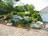 Small Rock Garden Ideas