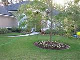 ... Backyard Landscaping Ideas : Easy Backyard Landscaping Ideas