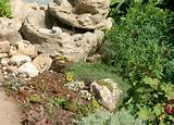 rock garden ideas at gardening with julie