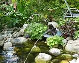 Rock for Small Garden Pond Ideas for How to Creating Small Size Garden ...