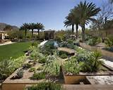 34 039 backyard desert landscaping home design photos