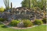 Gallery of Desert Landscaping Ideas for Coolest Frontyard Decoration