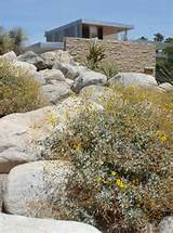 desert landscaping modern architecture blend together at richard