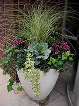 fabulous fall flowers container ideas