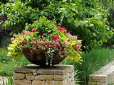 container gardens 3 tips for planting yours