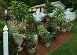 gardening ideas for flowers cool flower pots container garden ideas