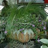 container gardening ideas for flowers container flower garden ideas