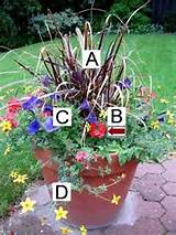 spring container gardening seasonal flower gardening ideas