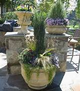 chic container gardening ideas for flowers