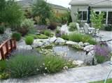 dashinh free landscaping ideas