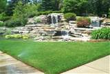 Landscaping Ideas Guru Diagnoses and Cures Your Lawn and Garden ...