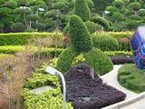 inexpensive landscaping ideas – unfortunately re landscaping your ...