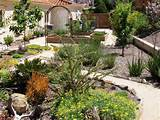 Cheap Landscaping Ideas With Ornamental Plants
