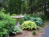 ... landscaping ideas . This article was designed to help you can