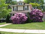 small front yard landscaping ideas design pictures remodel the