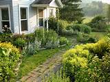 yard garden front yard landscape ideas landscaping pictures front yard