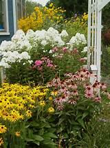 24,236 perennial flower garden Home Design Photos