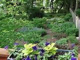 perennial garden ideas flower garden gardening landscape design
