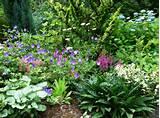 perennial garden design ideas 160 Perennial Garden Design Ideas