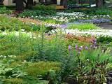 ... Perennial Flower Garden Design Beautiful Flower Garden Layout Ideas