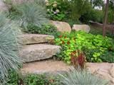 home garden landscaping ideas home garden landscaping ideas