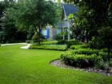 Gilbert Landscape Services