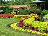 landscape design garden » home garden and landscaping ideas