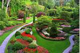 Smart Landscape Design Ideas
